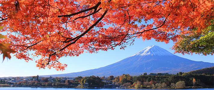 viaggi gruppo Giappone autunno